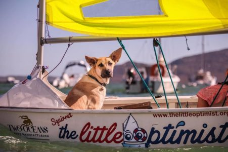 Young man to spend 24hrs in tiny boat to raise funds for animal welfare